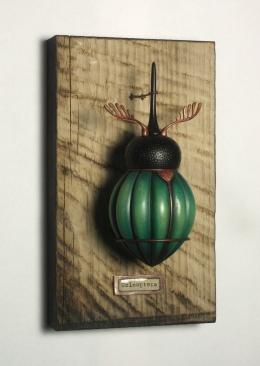 Coleoptera Box I a