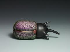 Coleoptera Box II a