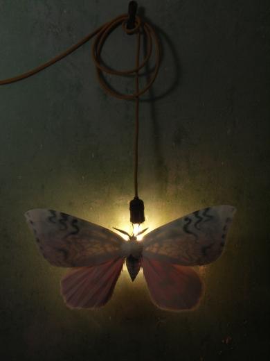 moth-full-piece-lit
