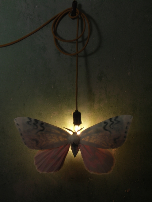 moth-full-piece-lit